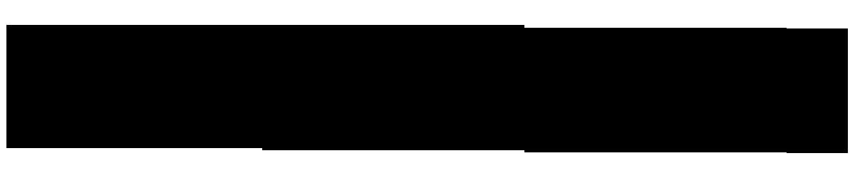 Stelbel Logo3