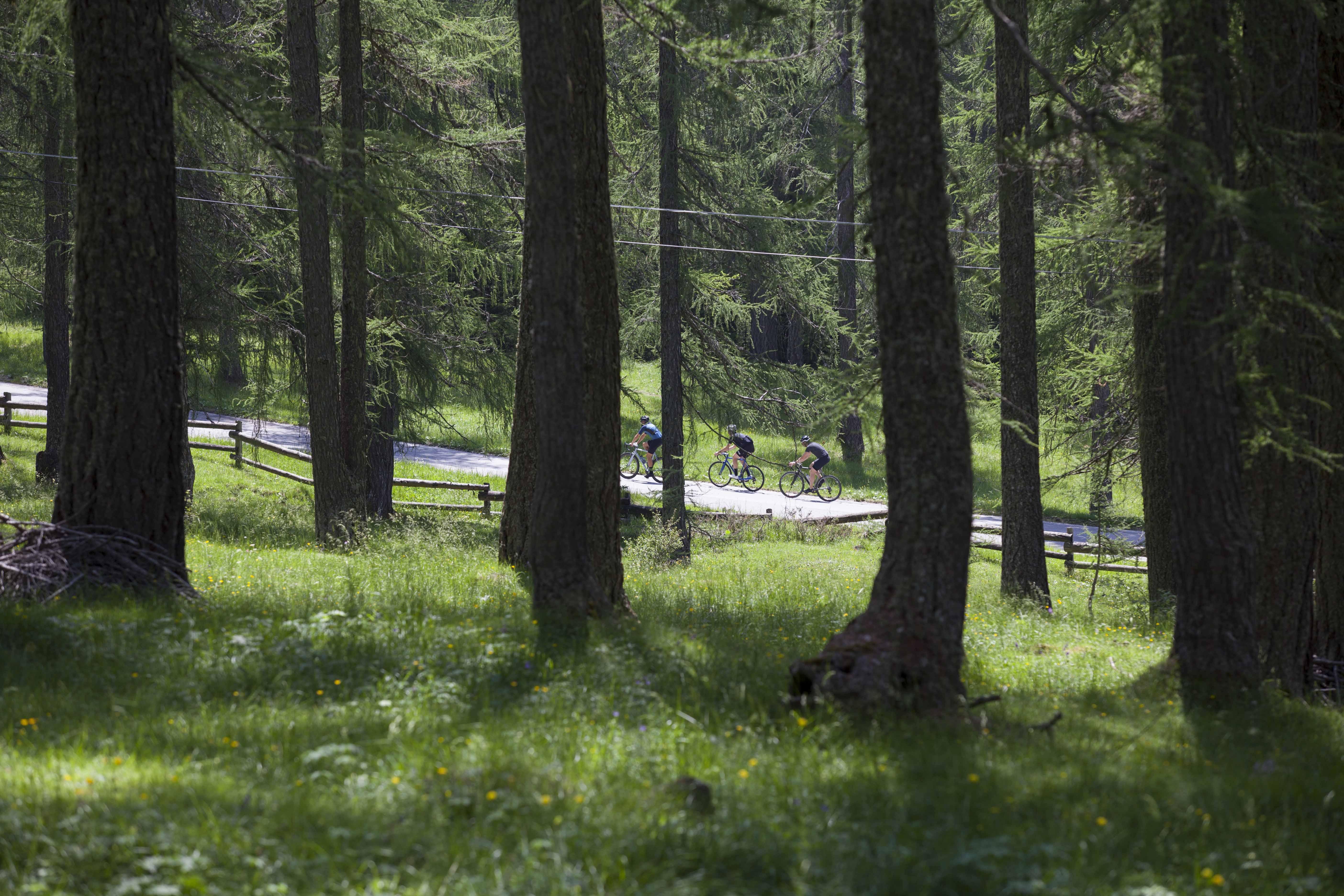 Stelbel Dolomiti 19